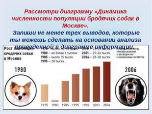 Рассмотри диаграмму «Динамика численности популяции бродячих собак в Москве».