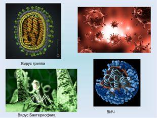 Вирус гриппа ВИЧ Вирус Бактериофага