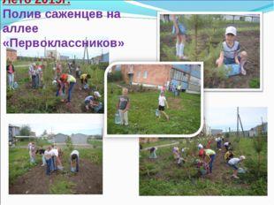 Лето 2015г. Полив саженцев на аллее «Первоклассников»