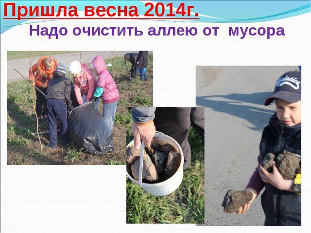 Пришла весна 2014г. Надо очистить аллею от мусора