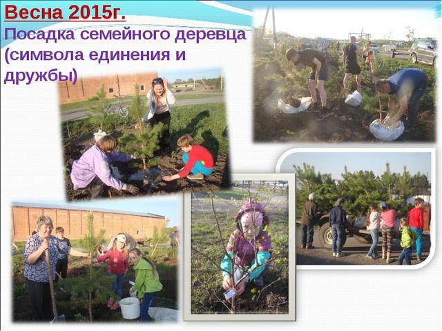 Весна 2015г. Посадка семейного деревца (символа единения и дружбы)