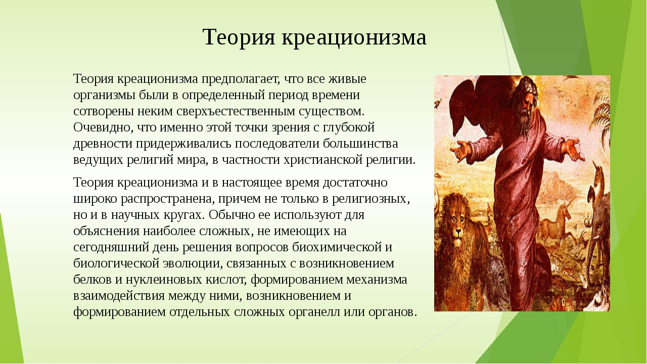 Теория креационизма Теория креационизма предполагает, что все живые организмы...