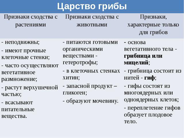 Царство грибы Признаки сходства с растениями Признаки сходства с животными Пр...