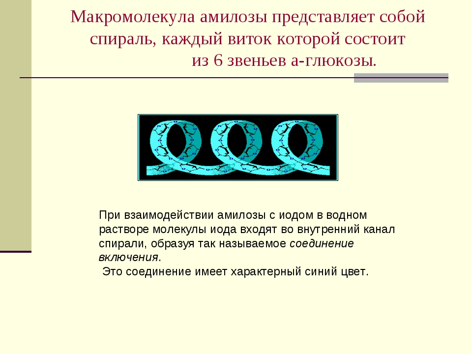 Макромолекула амилозы представляет собой спираль, каждый виток которой состои...