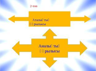 Аталықтың құрылысы Аналықтың құрылысы 2-топ
