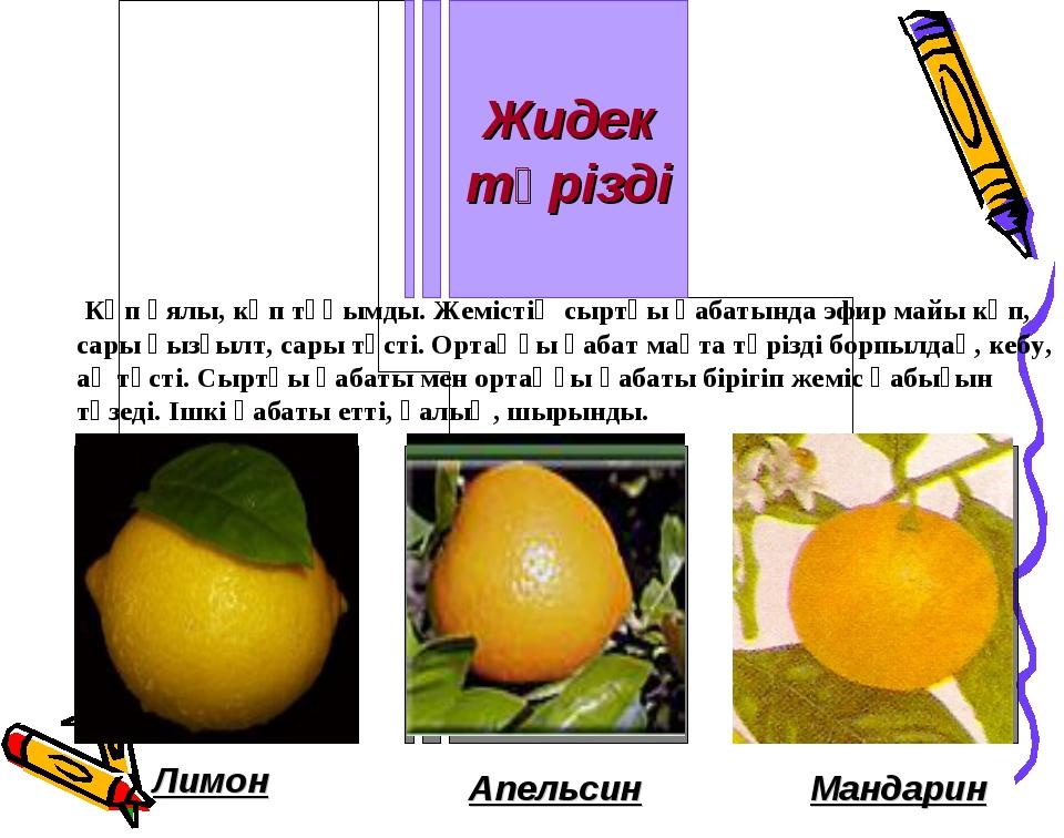 Лимон Апельсин Мандарин Көп ұялы, көп тұқымды. Жемістің сыртқы қабатында эфир...
