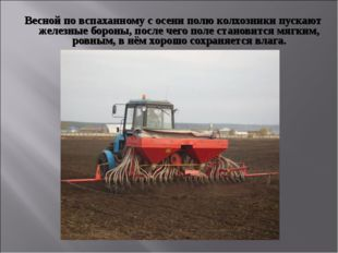 Весной по вспаханному с осени полю колхозники пускают железные бороны, после