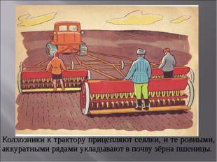 Колхозники к трактору прицепляют сеялки, и те ровными, аккуратными рядами укл