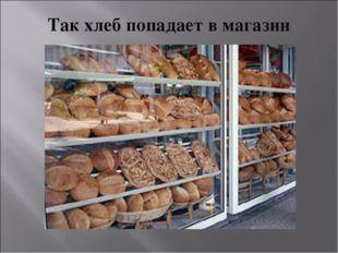 Так хлеб попадает в магазин