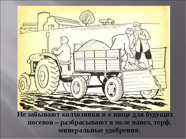 Не забывают колхозники и о пище для будущих посевов – разбрасывают в поле нав...