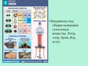 Объединены под общим названием галогенные вещества. Фтор, хлор, бром, йод, ас
