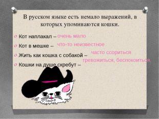 В русском языке есть немало выражений, в которых упоминаются кошки. Кот напла