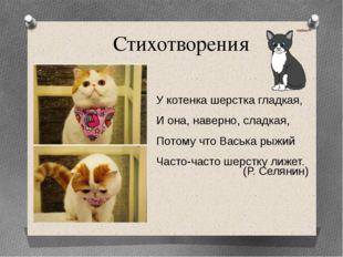 Стихотворения У котенка шерстка гладкая, И она, наверно, сладкая, Потому что