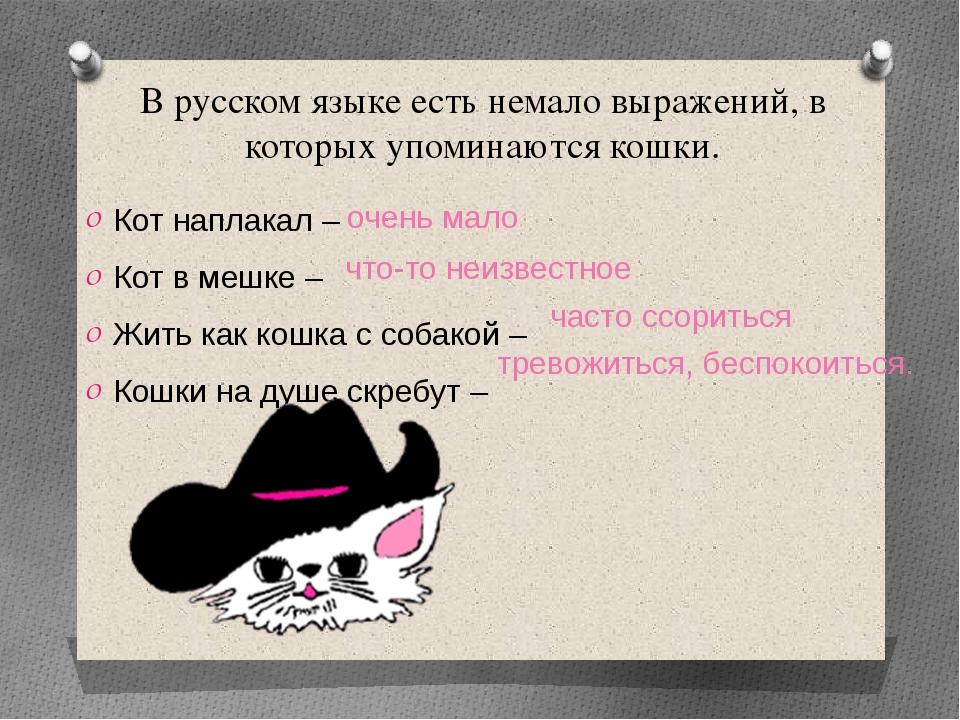 В русском языке есть немало выражений, в которых упоминаются кошки. Кот напла...