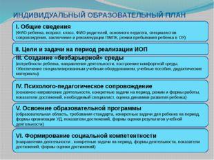 I. Общие сведения (ФИО ребенка, возраст, класс, ФИО родителей, основного пед