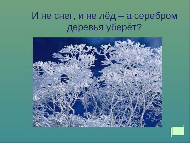 И не снег, и не лёд – а серебром деревья уберёт?