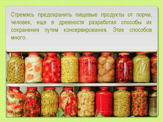 Стремясь предохранить пищевые продукты от порчи, человек, еще в древности раз...