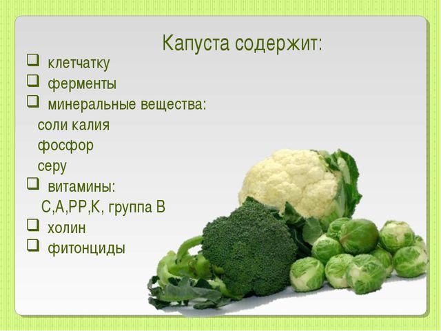 клетчатку ферменты минеральные вещества: соли калия фосфор серу витамины: С,А...