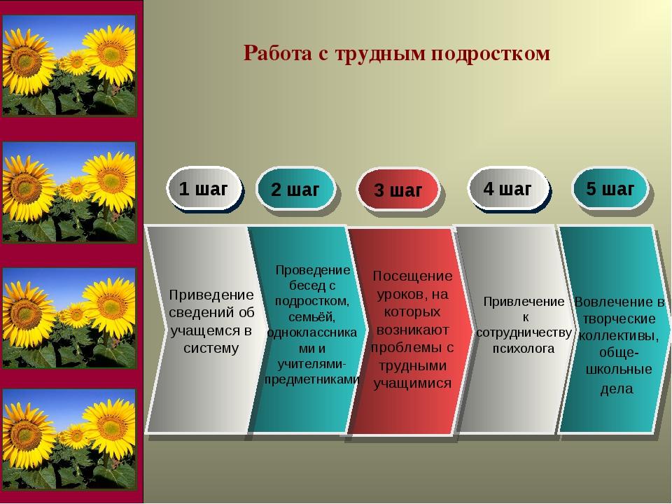 1 шаг 2 шаг 3 шаг 4 шаг Приведение сведений об учащемся в систему Проведение...