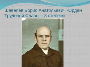Шевелёв Борис Анатольевич -Орден Трудовой Славы – 3 степени