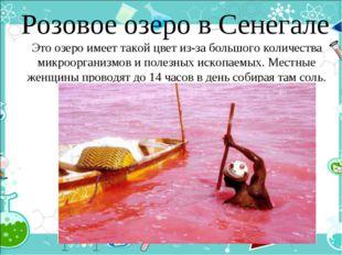 Розовое озеро в Сенегале Это озеро имеет такой цвет из-за большого количеств