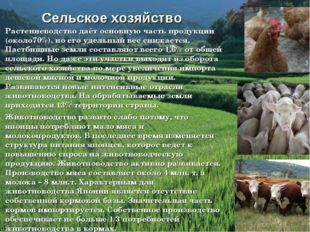 Растениеводство даёт основную часть продукции (около70%), но его удельный вес