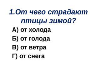 1.От чего страдают птицы зимой? А) от холода Б) от голода В) от ветра Г) от с