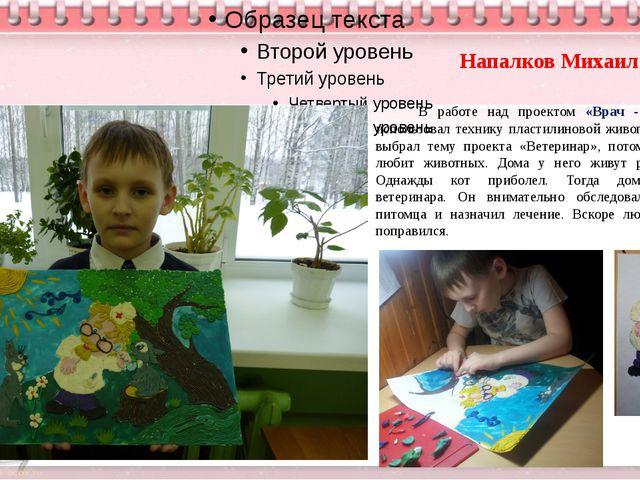 Напалков Михаил В работе над проектом «Врач - ветеринар» использовал технику...