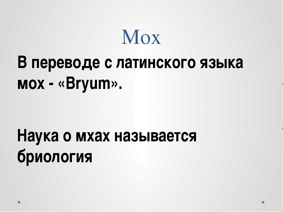 Мох В переводе с латинского языка мох - «Bryum». Наука о мхах называется брио...