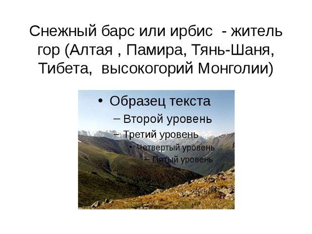 Снежный барс или ирбис - житель гор (Алтая , Памира, Тянь-Шаня, Тибета, высок...