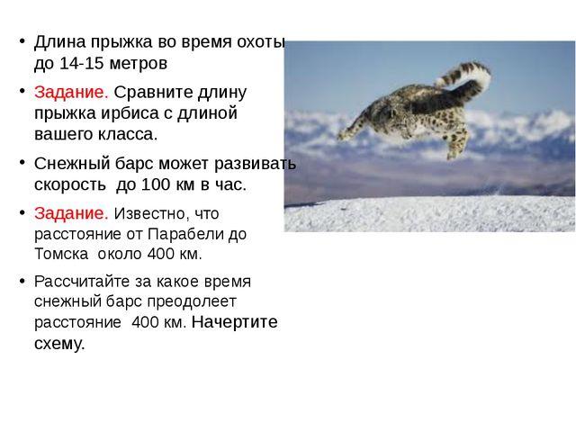 Длина прыжка во время охоты до 14-15 метров Задание. Сравните длину прыжка ир...