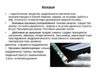 Кокаин –наркотическое вещество, выделенное из растения коки, произрастающе