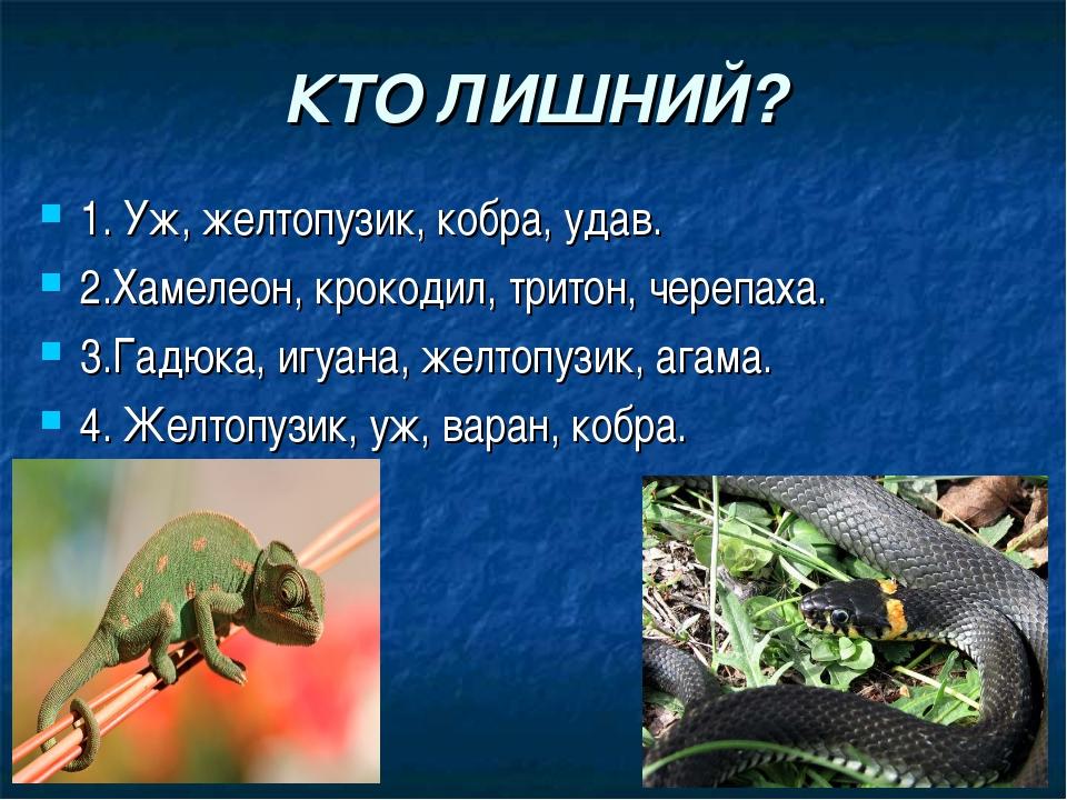 КТО ЛИШНИЙ? 1. Уж, желтопузик, кобра, удав. 2.Хамелеон, крокодил, тритон, чер...