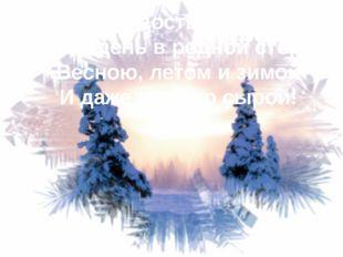 Сердце радостью наполнит Каждый день в родной сторонке Весною, летом и зимой