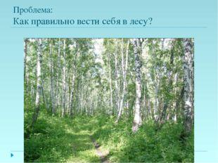 Проблема: Как правильно вести себя в лесу?
