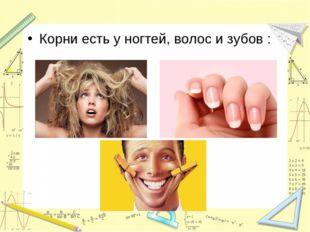 Корни есть у ногтей, волос и зубов :