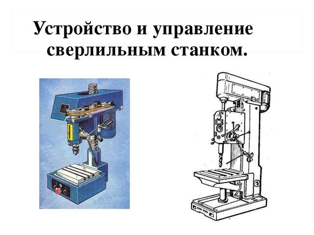 Устройство и управление сверлильным станком. trudovik45.ucoz.ru