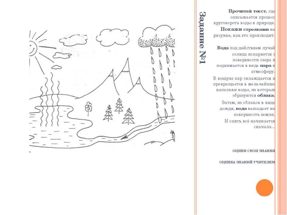 Задание №1 Прочитай текст, где описывается процесс круговорота воды в природе...
