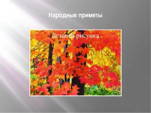 Народные приметы Листья осины лежат на земле кверху лицом-зима будет холодная
