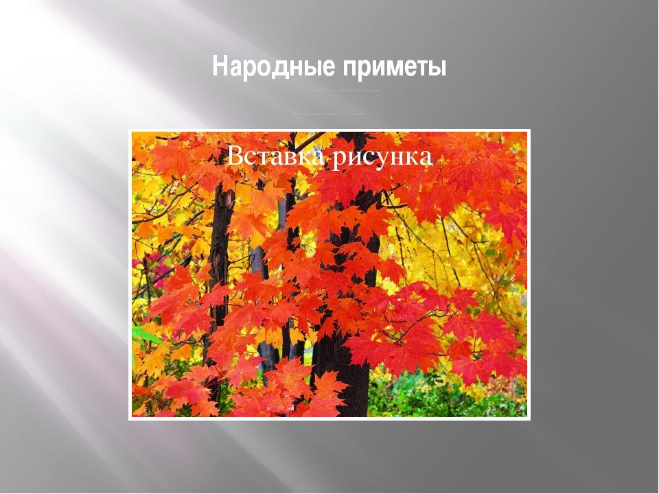 Народные приметы Листья осины лежат на земле кверху лицом-зима будет холодная...