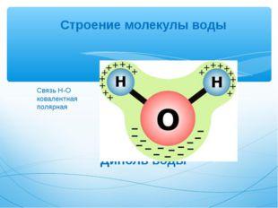 Строение молекулы воды Диполь воды Связь Н-О ковалентная полярная