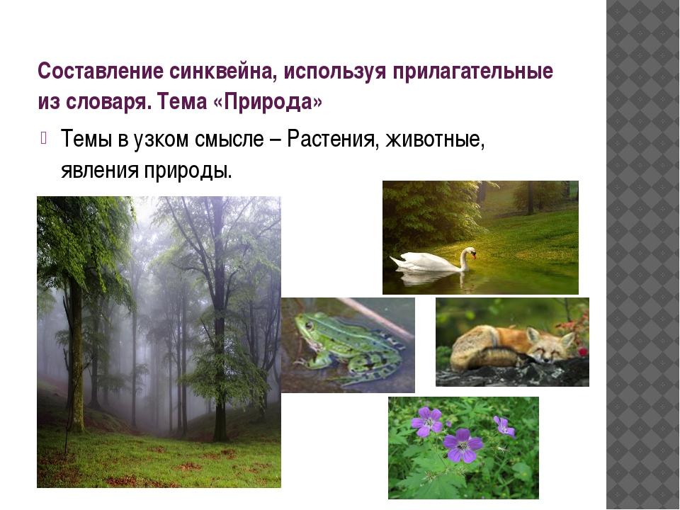 Составление синквейна, используя прилагательные из словаря. Тема «Природа» Те...