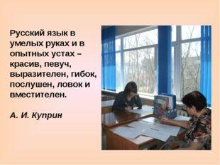 Русский язык в умелых руках и в опытных устах – красив, певуч, выразителен, г