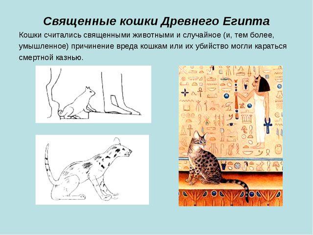Священные кошки Древнего Египта Кошки считались священными животными и случай...