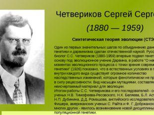 Синтетическая теория эволюции (СТЭ) Четвериков Сергей Сергеевич (1880 — 1959)