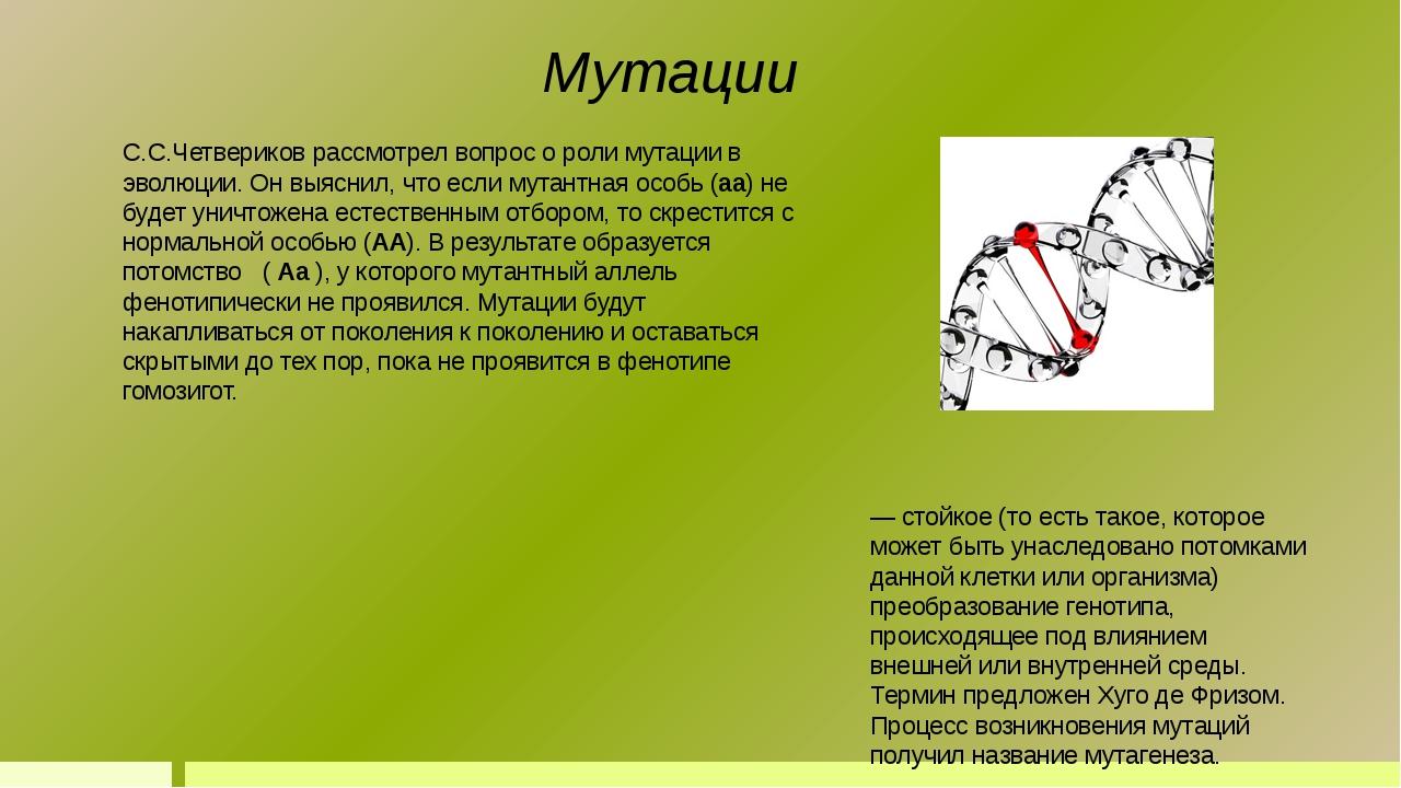 Мута́ция (лат. mutatio — изменение) — стойкое (то есть такое, которое может б...