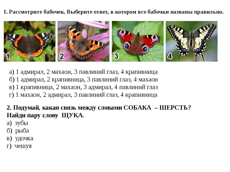 1. Рассмотрите бабочек. Выберите ответ, в котором все бабочки названы правиль...