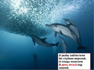 И рыбы заблестели Во глубине морской, И птицы полетели В день пятый над землей.