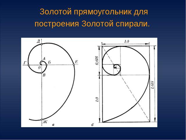 Золотой прямоугольник для построения Золотой спирали.