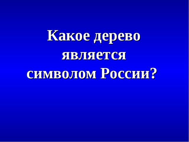 Какое дерево является символом России?